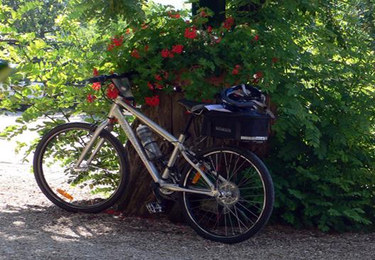 Randonnées cyclistes dans le Chianti autour de l'hôtel de charme Villa le Barone