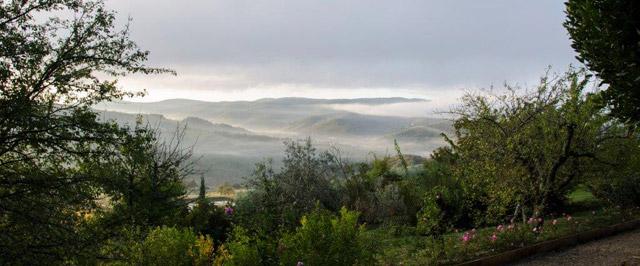 Une vue sur les collines du Chianti depuis une terrasse de Villa le Barone par Andrea Huyck