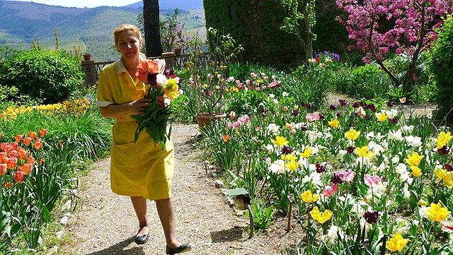 Amira cueille des fleurs au jardin pour les bouquets à Villa le Barone