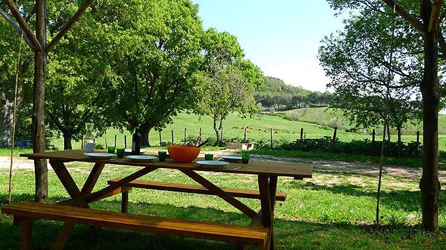 Podere Florestano , Vecchienna, Sasso Pisano, Alta Maremma , Toscane