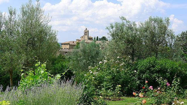 Parfums et vues à Villa le Barone en Toscane