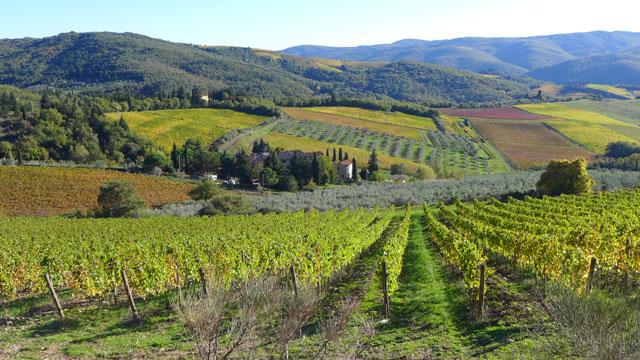 Paysage du Chianti en Toscane